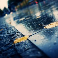 Rainy Day in Berlin by IsacGoulart