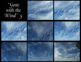 Gone with the wind - 3 by Hermit-stock