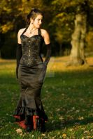 Brocade corset and skirt by morrflickan