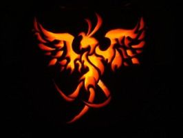 Pumpkin Carving 2009 by hglucky13