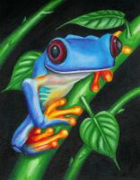 Frog III by lawngnome