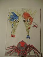 Sonic and Sally webbed by Levvvar