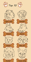 My new top 10 canine breeds by PikYourPup-Shelter