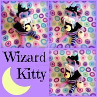 Wizard Kitty Collage by MadameWario