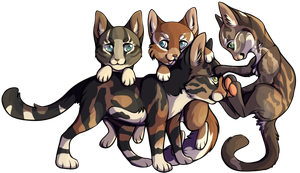 Kitties by Okoe