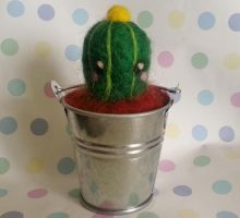 Needle felted cactus by Knuckers-Hollow
