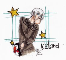 Ice and puffin by AnnHolland
