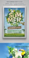 Summer Party Flyer by designercow