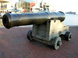 Cannon by FairieGoodMother