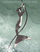 dalls porpoise merboy by solipherus