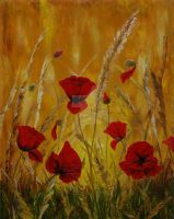 Poppies2 by florescu