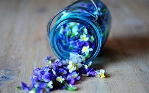 Flowers Glass Wallpaper by Isfe