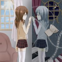 If I could enter The Mirror by Pluvias