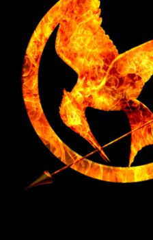 Mockingjay by Co--Existance