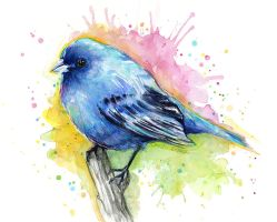 Indigo Bunting Watercolor Illustration by Olechka01