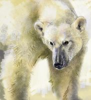 Painter Polarbear by littlecrow