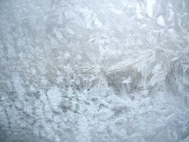 Icy window by ale2xan2dra
