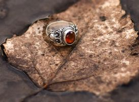 Ring by antiparticle