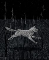 Ghost Dog by offermoord
