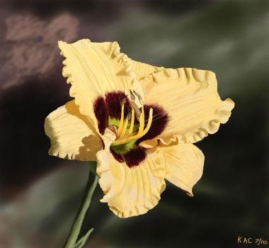 Yellow Purple Lilly by kennyc