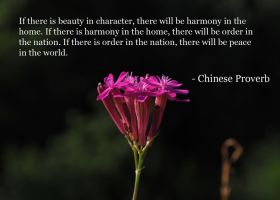Chinese Proverb - If there is beauty in... by Leafeo