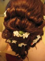 Prom,Bridal Up-Do 4 by ToxicTears47