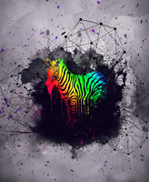 Zebra Splash Colors by philipp-garcia
