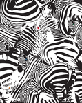 Choice or The Zebra Factory by CWilk