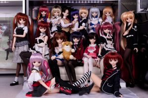 DD Daughters Class of 2010 by Wolfheinrich