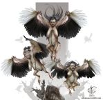 Harpies by V4m2c4