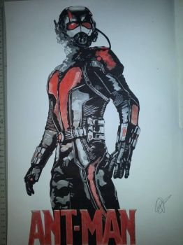 Ant-Man by Emmris-Dessin