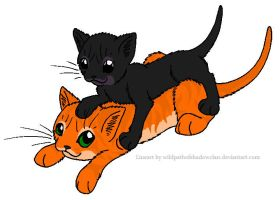 Firestar and Ravenpaw by lucymaggielover