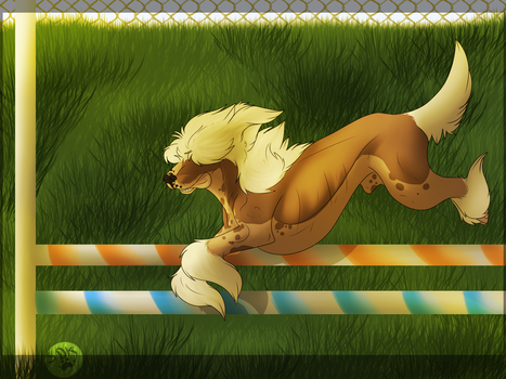 I-I Can't See! by Stubborn-Dog-Kennels