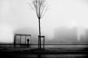 FOG 017 by metindemiralay