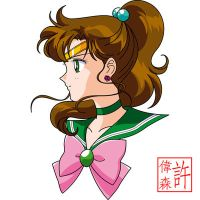 Sailor Jupiter Face Anime Style by xuweisen