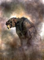 Sabertooth in Fog by deskridge