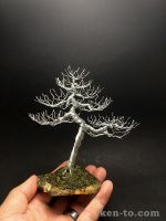 Large deciduous wire bonsai tree by Ken To by KenToArt