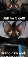 Auction reminder: Maned wolf by Sharpe19