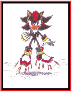 Shadow The Hedgehog by funkyjeremi
