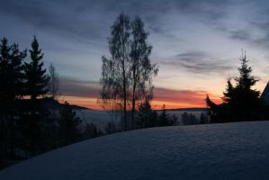 Norwegian Winter by Riddande