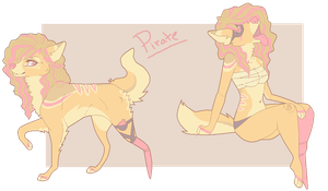pirate ref by mesavy