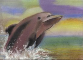 Dolphin by Unfaithed