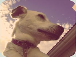 Duschka In The Sky With Clouds by Autopsyh