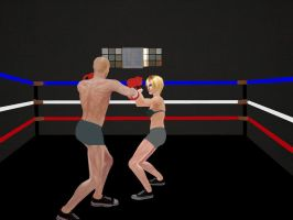 Intergender Boxing 02 by andypedro