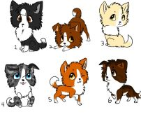 Chibi Border Collie draw-to adopts OPEN by AuroraIkia
