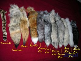 Fox Tail Reference by Zhon