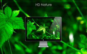 HD Nature by robokingars