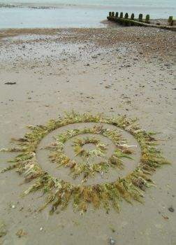 Concentric Seaweed Circles by Dishtwiner