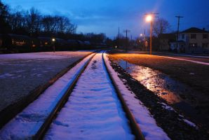 Snow Coated Tracks by SpecialK42293