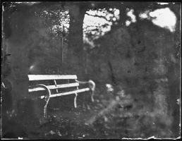 bench black and white by thesadstork